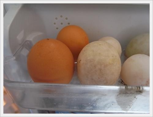 ไข่เป็ด ไข่ไก่
