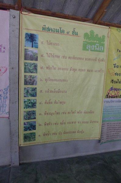 สวนลุงนิล พืชคอนโด 9 ชั้น